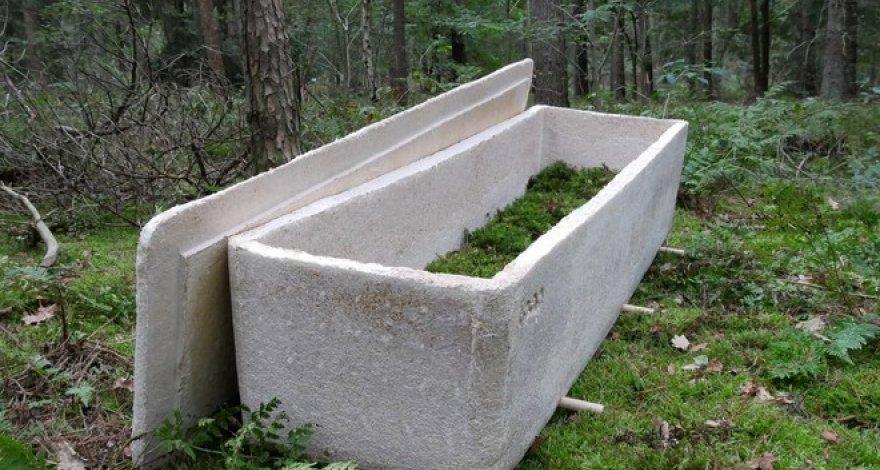 В Нидерландах ученый предложил хоронить людей в гробах из грибов