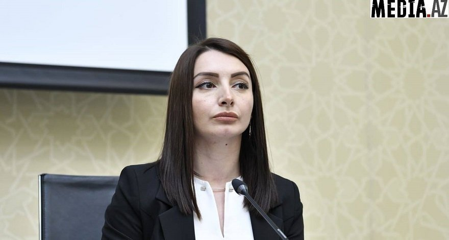Лейла Абдуллаева: Заявление МИД Кипра носит односторонний характер
