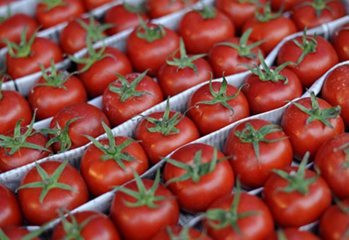 Азербайджан в ноябре увеличил экспорт помидоров в 3 раза